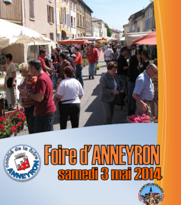 Aspiration-centralisee-husky-foire-anneyron