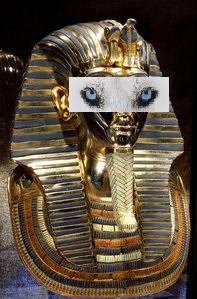 aspiration-centralisee-husky-foire-st-etienne-egypte